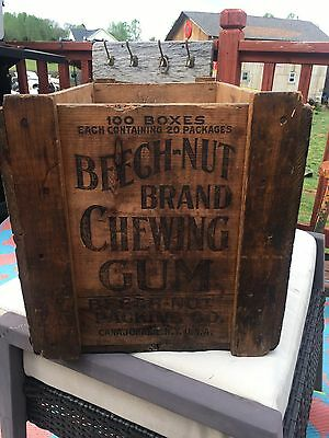 RARE Beech-Nut Chewing Gum Packing Shipping Wooden Crate