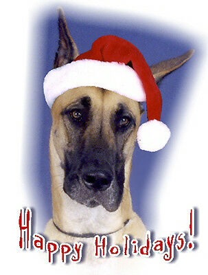 Pet Christmas Cards:Dog Great Dane Fawn