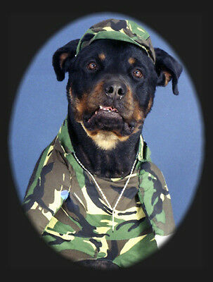 Pet Greeting Cards:Dog Patriotic Army Rottweiler