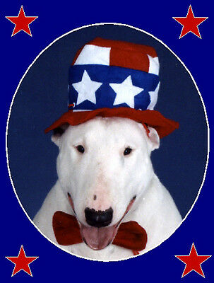 Pet Greeting Cards:Dog Patriotic Bull Terrier