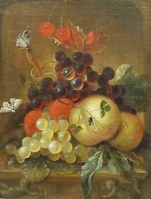 17th Century Dutch Old Master Fruit Still Life Butterflies Fly Antique Painting