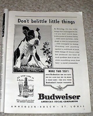 1937 Budweiser Print Ad / Original Picture Of Spuds ? / Full Page Magazine As