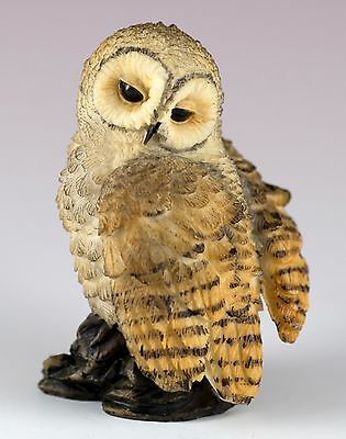 """Mini Spotted Owl Figurine By Veronese Design 2 3/8"""" High Resin New In Box!"""
