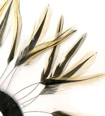 Natural Badger Stripped Hackle Feathers. Sewing, Costuming, Fascinators and Hats