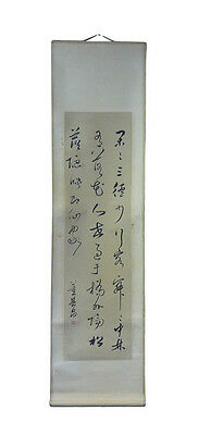 Chinese Calligraphy Ink Scroll Painting Reproduction Wall Art cs955-12D