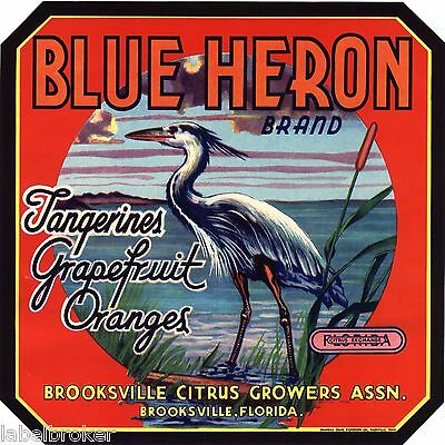 Blue Heron Crate Label Florida Vintage Brooksville 9X9 Original Wading Bird 1940