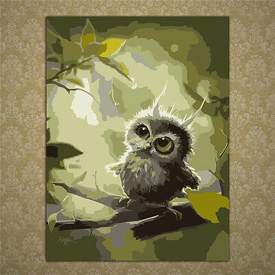 Owl Oil Painting By Numbers Acrylic Drawing On Canvas DIY Home Office Decor