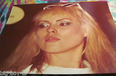 "Blondie / Debbie  Harry - 8"" X 10"" Color Photo -------  K @ @ L"