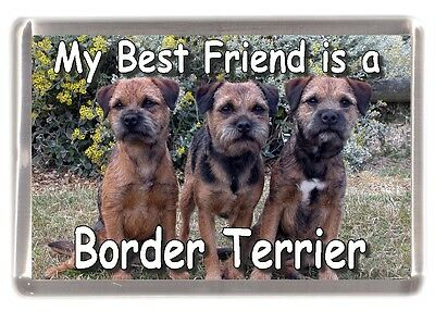 AD-BT2FM Border Terrier Fridge Magnet Stocking Filler Christmas Gift