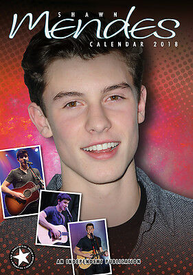 Shawn Mendes   Kalender 2018 (Dream) Neu