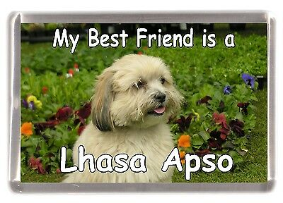"Lhasa Apso Dog Fridge Magnet ""My Best Friend is a Lhasa Apso"" by Starprint"