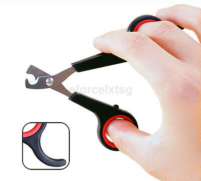 Black Nail Grooming Clippers Toe Trimmer Scissors Tool for Pet Dog Cat Rabbit CA