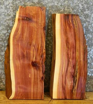 2-Red Cedar Partial Natural Edge End Table Tops/Taxidermy Base Slabs 13508-13509