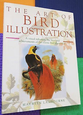 history BIRD ILLUSTRATION art artists paints drawings large HARDBACK/DJ