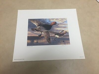 2004 Federal Duck Stamp Print & Artist Signed Stamp - Redheads - Scot Storm