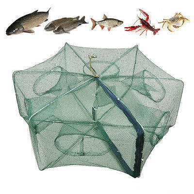 6 Hole Fishing Net Trap Cast Dip Cage Fish Minnow Crawdad Shrimp Foldable net