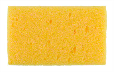 RTF Granville : Synthetic Sponge