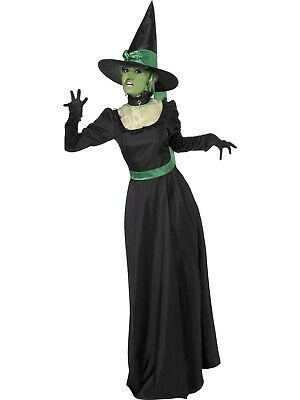 Wicked Witch Of The West Fantasy Evil Halloween Fancy Dress Costume Movie
