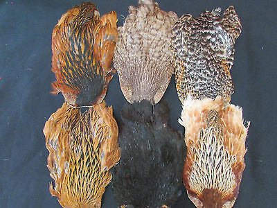 Natural Indian Hen Capes Top Grade Fly Tying Capes