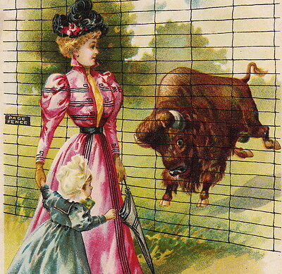 1800's Charging Buffalo: HOW the West Was Won by Page Fence Adrian MI Trade Card