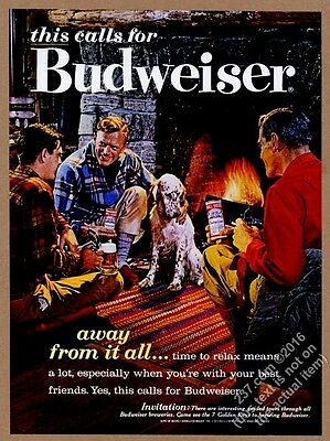 1962 English Setter fireplace friends photo Budweiser Beer vintage print ad