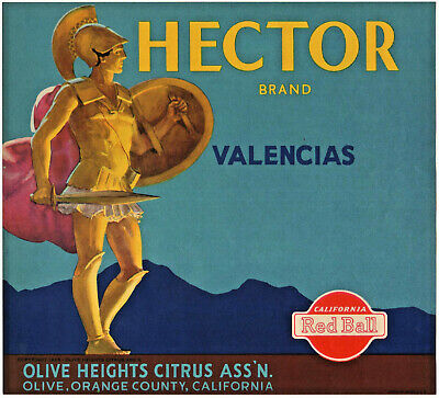 *Original* HECTOR Trojan War MYTHOLOGY Rare OLIVE Orange Crate Label NOT A COPY!