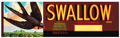 Swallow Crate Label Bird In Flight Woodlake Tulare County California Original