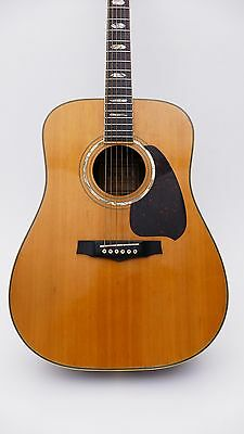 Ibanez Vintage V 380 Japan Old Acoustic Guitar Akustische Alte Gitarre Antique