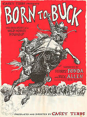 BORN TO BUCK original RODEO 1968 movie poster CASEY TIBBS/WILD HORSE ROUNDUP