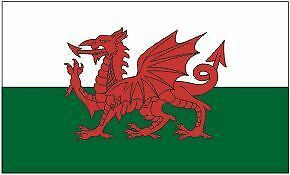 Welsh Dragon 5 x 3 Flag -Wales fly from a windsock pole