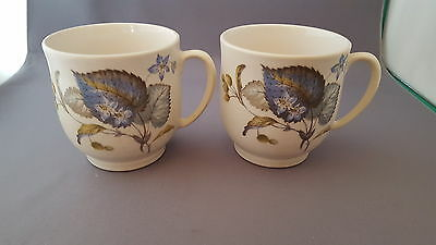 2 Vintage Sylvac Ware Foilage Pattern Mugs Made In England