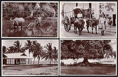 Postcards: Malaysia - Malacca 1930's Set (15) of Real Photographs of Malacca.