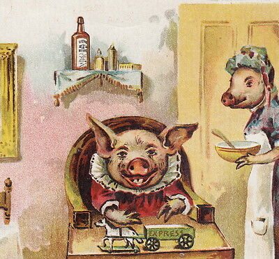 Dr Kings Electric Bitters Bucklen Chicago Pig poem BIG Advertising Trade Card