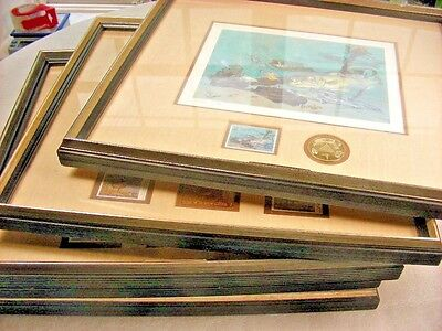US, 5 Limited Edition Duck Prints with Stamps & Gold plated medals, framed