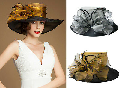 Womens Formal Organza Wedding Church Occasional Bridal Mother's Feather Hat A045