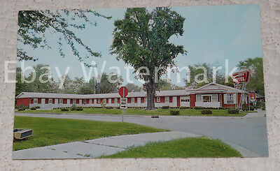 CENTRALIA ILLINOIS IL Queen City Motel Vintage Chrome Postcard