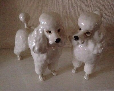 Beswick White Poodle figurines x 2 (two)