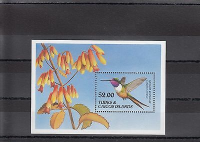Timbre Stamp  Bloc Turks & Caicos Y&t#95 Oiseau Bird  Neuf**/mnh-Mint 1990 ~A05