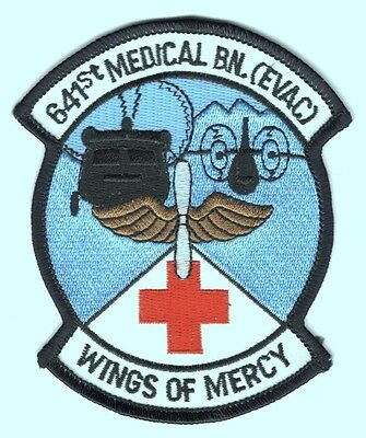 Army Patch:  641st Medical Battalion