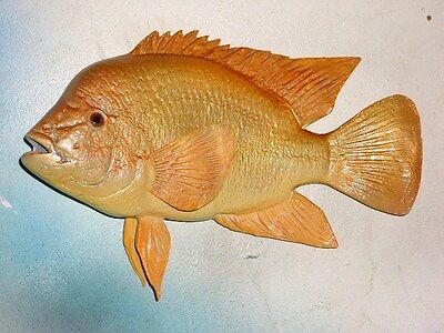 "13"" RED DEVIL CICHLID - fiberglass reproduction blank"