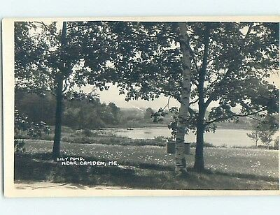 Pre-1930 rppc TREES AT LILY POND Camden Maine ME HM3279
