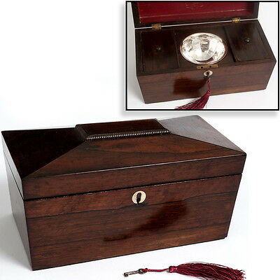 Antique Regency TEA CADDY or Pot Tobacco BOX Rosewood w Key Jewellery Trinkets