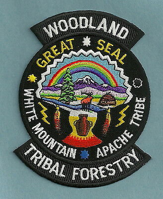 White Mountain Apache Tribal Woodland Forestry Patch