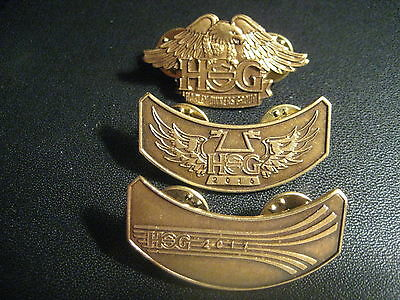 2017  2016 and new style EAGLE HOG PINS PIN  HARLEY DAVIDSON OWNERS GROUP