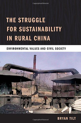 The Struggle for Sustainability in Rural China: Environ - Paperback NEW Bryan Ti