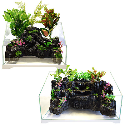 Aquascaping Insularium Riparium Planted Sloped Fish Tank Available in 9L & 36L