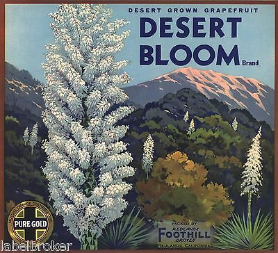 Palm Springs Crate Label Desert Bloom Redlands 1930S Vintage Cactus Yucca