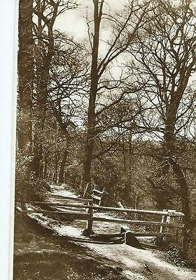 Herefordshire RP of the Lovers' Seat, John Kyrle's Walk, Ross  @ 1925