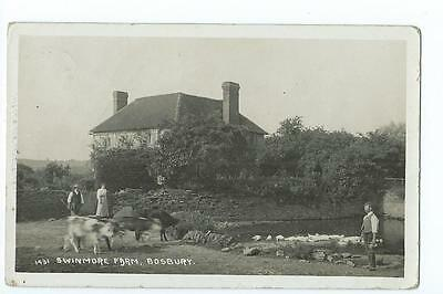 Herefordshire RP by Tilley & Son of Swinmore Farm, Bosbury PU 1098