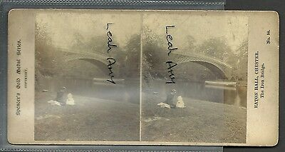 Original Early Stereoview Of Eaton Hall, Chester, Spencers Gold Medal Series.